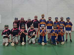 Boys Primary School Hurling Blitz