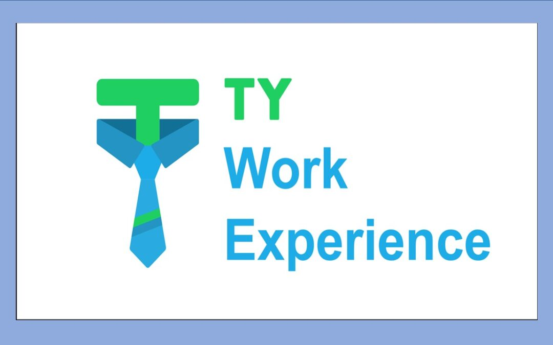 Transition Year – Work Experience 2021