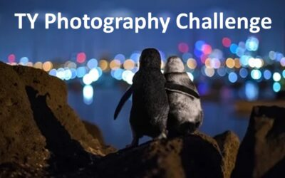 Transition Year Photography Challenge